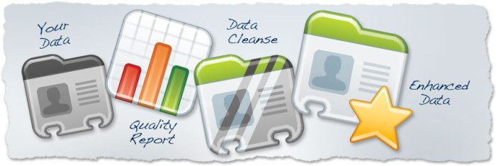 Data Cleansing and Enhancement