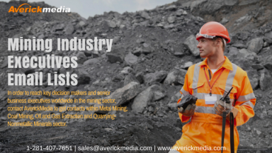 Mining Industry Executives Email Lists (1).png